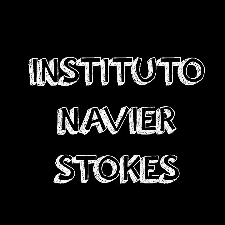 Instituto Navier Stokes para la Mecánica de Fluidos